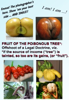 Fruit of Poisonous Tree